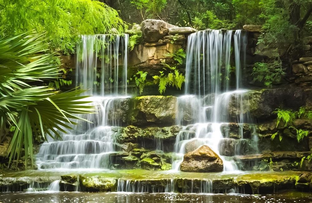 austin botanical gardens waterfall